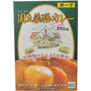 国立薬膳カレー ポーク 250g - 拡大画像
