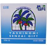 ヤシノミ洗剤ギフト YPN-15