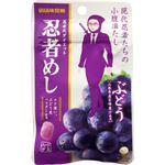 UHA味覚糖 忍者めし 山ぶどう味 20g×10個