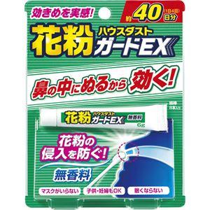 花粉ガードEX 無香料 6g - 拡大画像