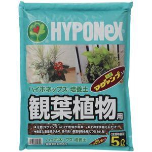 ハイポネックス 培養土 観葉植物用 5L - 拡大画像