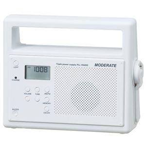 セイコークロック トリプルパワー 充電ラジオライト HS-R001 - 拡大画像