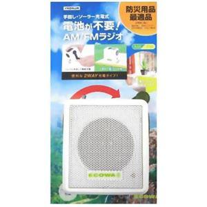 ヤザワ 手回し・ソーラー充電式 電池が不要! AM/FMラジオ BL107RSDWH - 拡大画像