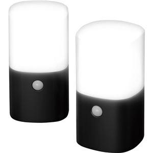 アイリスオーヤマ 乾電池式LEDガーデンセンサーライト 角型 ブラック 2個セット ZSL-MN1K-BK2