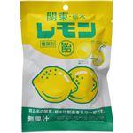 (まとめ買い)関東・栃木レモン飴 60g×10セット