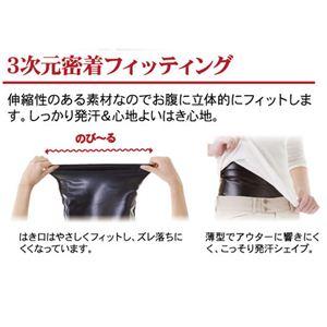 サウナウェストシェイパー Lサイズ 2枚組 【ダイエットサポート腹巻】