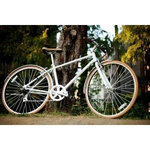 WACHSEN(ヴァクセン) 自転車 700Cアルミクロスバイク 6段変速 Reise+ダイナモライト+ワイヤーロック