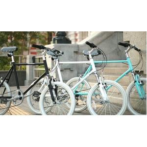 WACHSEN(ヴァクセン) 自転車 Lang(ラング) 20インチ サス付きアルミミニベロ 6段変速 ブルーグレー