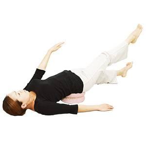 【送料無料】 体幹筋トレーニング器具 waist twister(ウエストツイスター) お買い得