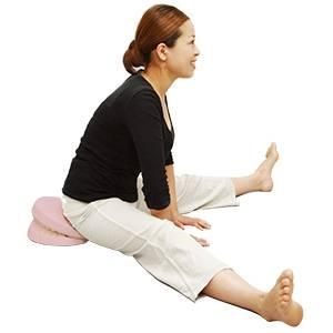 【送料無料】 体幹筋トレーニング器具 waist twister(ウエストツイスター) 通販 購入