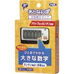 歩数計 あとなんぽ 大型表示タイプ PH173 【2個セット】