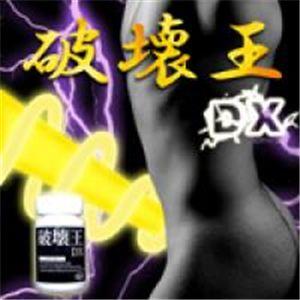 破壊王DX
