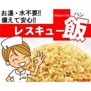 災害時などに安心便利 レスキュー飯 10食セット ホタテ - 拡大画像