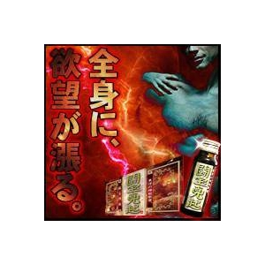 闘宝真起(とうほうしんき)-東洋の神秘シリーズ- - 拡大画像