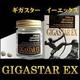 GIGA STAR EX (ギガスターEX) 写真1
