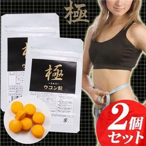 極 ウコン粒【2個セット】