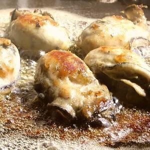 【本場】広島ミルク牡蠣2kgの詳細を見る