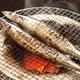 特大トロ秋刀魚 4kg(18本〜24本)