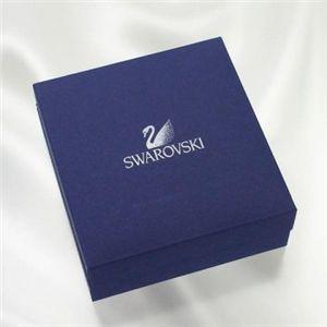 Swarovski(スワロフスキー) イヤリング/ピアス イヤリング/ピアス 1058468   DI0.6の写真3