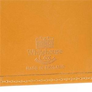 Whitehouseco(ホワイトハウスコックス) カードケース S7412 NEWTON f05