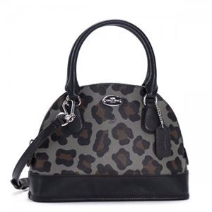 Coach Factory(コーチ F) ナナメガケバッグ 36219 SV/GE h01