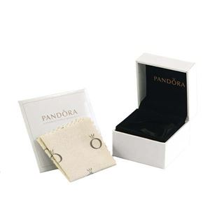 PANDORA(パンドラ) チャーム 781242CZ SILVER