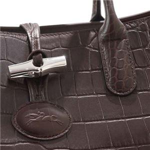 Longchamp(ロンシャン) ハンドバッグ 1681 304 EBENE f04