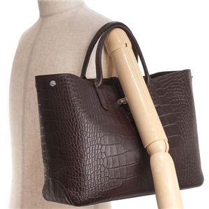 Longchamp(ロンシャン) ハンドバッグ 1681 304 EBENE f05