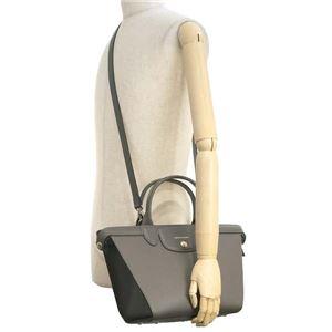 Longchamp(ロンシャン) ハンドバッグ 1117 813 TERRE f05