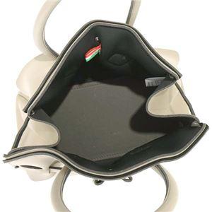 SAVE MY BAG(セーブマイバッグ) ハンドバッグ  10204N  FANGO h03