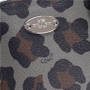 Coach Factory(コーチ F) ナナメガケバッグ  36219 SV/GE  f04