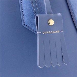 Longchamp(ロンシャン) ハンドバッグ 1294 564 BRUME f04