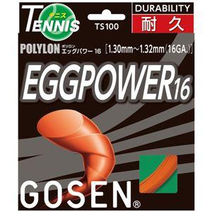 GOSEN(ゴーセン) エッグパワー16 TS100OR
