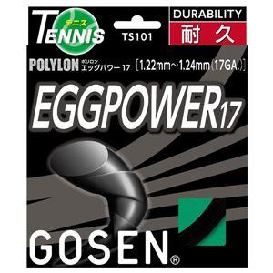GOSEN(ゴーセン) エッグパワー17 ブラック TS101BK