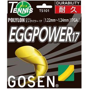 GOSEN(ゴーセン)エッグパワー17イエローTS101Y