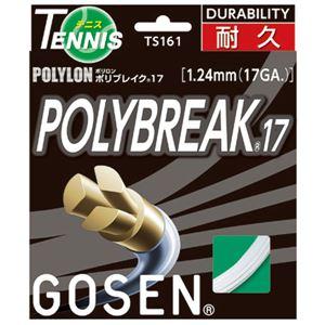 GOSEN(ゴーセン) ポリブレイク17 TS161W