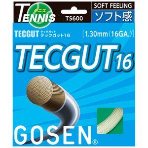 GOSEN(ゴーセン)テックガットテックガット16TS600W