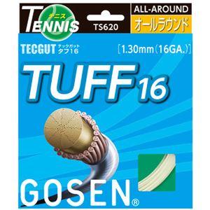 GOSEN(ゴーセン) テックガット タフ16 TS620W