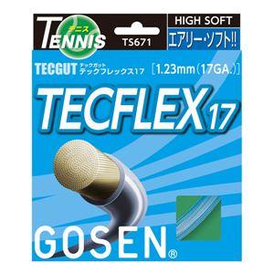 GOSEN(ゴーセン) テックガット テックフレックス17 パールホワイト TS671PW