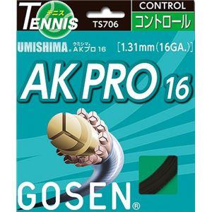 GOSEN(ゴーセン) ウミシマ AKプロ16 ブラック TS706BK