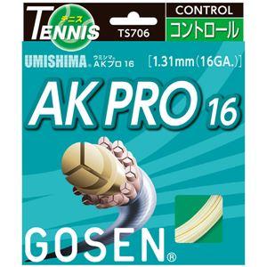GOSEN(ゴーセン)ウミシマAKプロ16ナチュラルTS706NA
