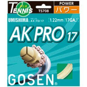 GOSEN(ゴーセン) ウミシマ AKプロ17 TS708NA