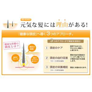 ファイテン(PHITEN)ラヌーゴ(発毛促進剤) 150ml (医薬部外品)