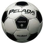 モルテン(Molten) サッカーボール5号球 ペレーダ4005 シャンパンシルバー×メタリックブラック F5P4005