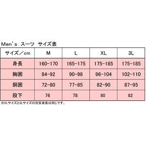PUROMONTE(プロモンテ) Rain Wear ゴアテックス レインスーツ Men's SR135M ロイヤルブルー×チャコール L