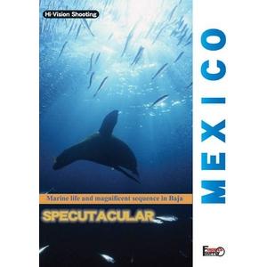 厳選!世界の海DVD4本セット+オマケ付! - 拡大画像