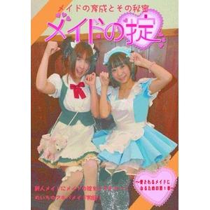 DVD メイドの掟~愛されるメイドになるための第1章~