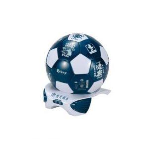 池商 サッカーボール型冷温庫4L BD-S04 - 拡大画像