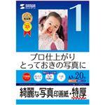 サンワサプライ インクジェット写真印画紙・特厚 JP-EP2NA3