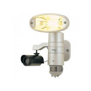 ライテックス セキュリティーライト ダミーカメラ付き C150 h01
